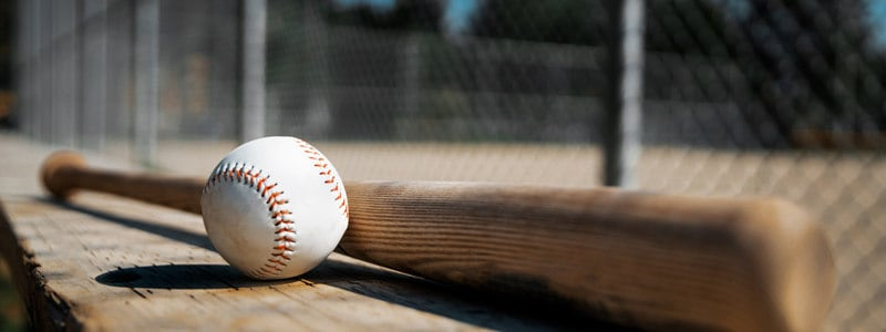 Best Wood Bats for 2018 - Reviews & Buying Guide - The Bat Nerds
