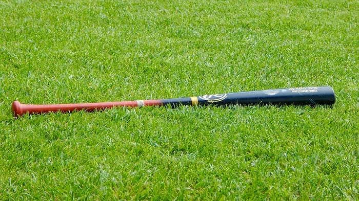 How to Take Care of Your Baseball Bat Steps To Finish Bat on
