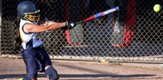 best fastpitch bats